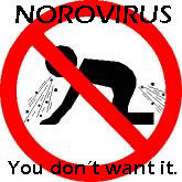 Norovirus common on cruise ships